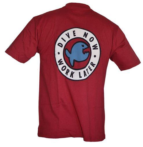 T-SS iQ T-Shirt DNWL